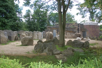 Zoo Duisburg 2012 827
