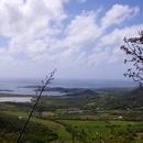 Au sommet (5).. - Photo : Wiki et Giloucat