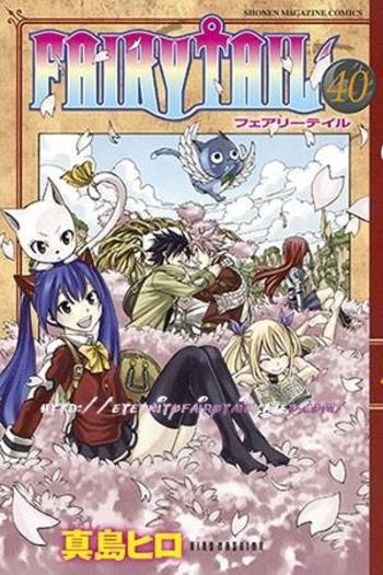 fairy tome 40