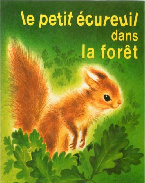 Romain Simon, Le petit Écureuil dans la forêt