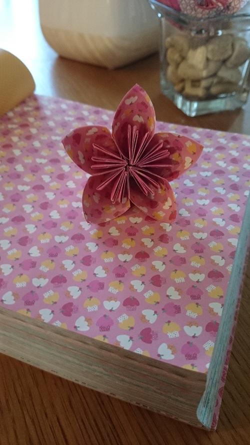 Fleurs de papier...