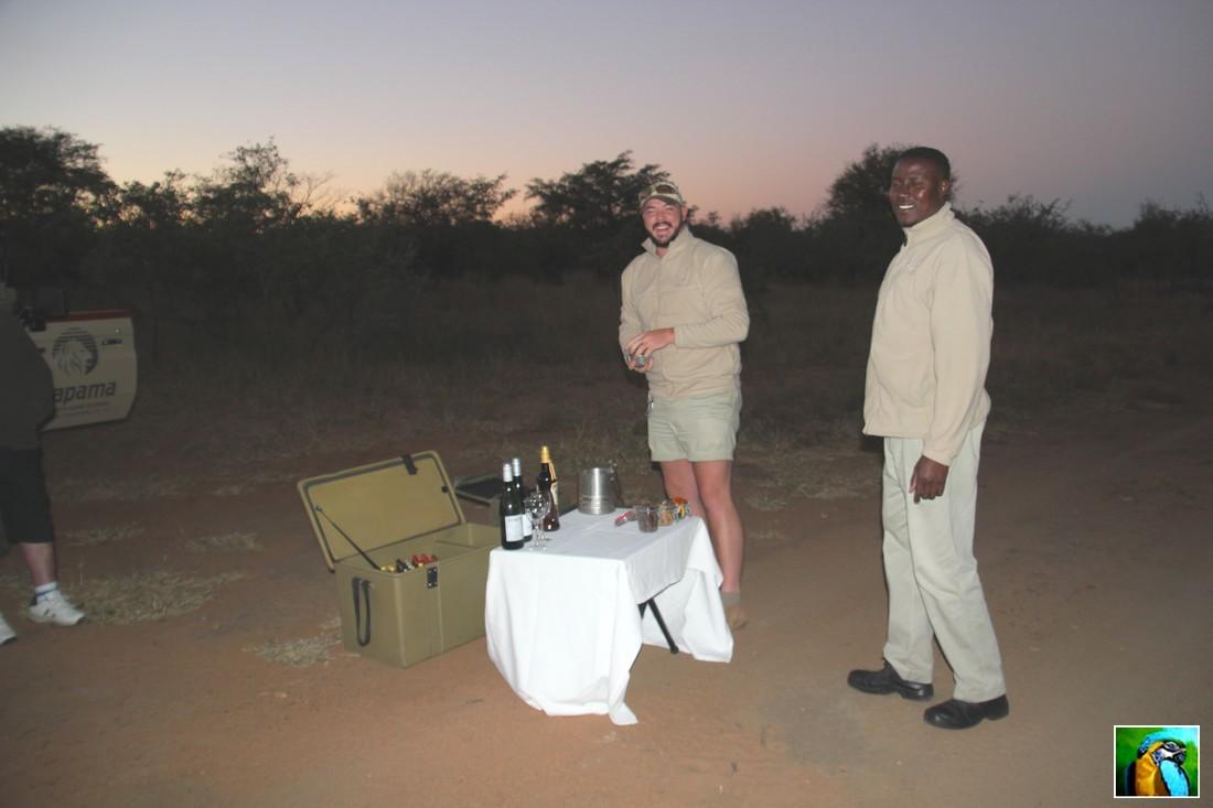 AFRIQUE du SUD : juin 2018: Allez, on s'en va faire un autre safari.