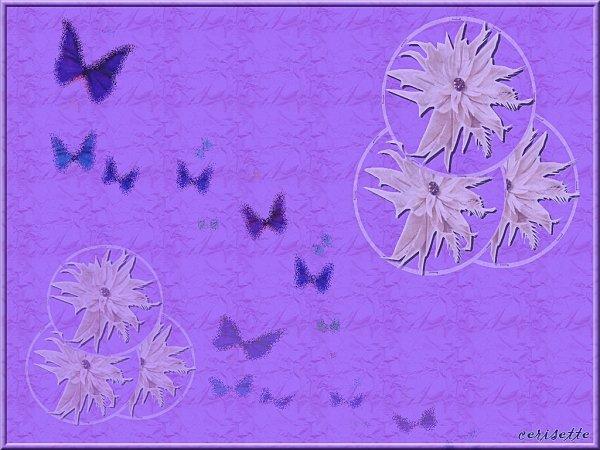 papillon-fleurs.jpg