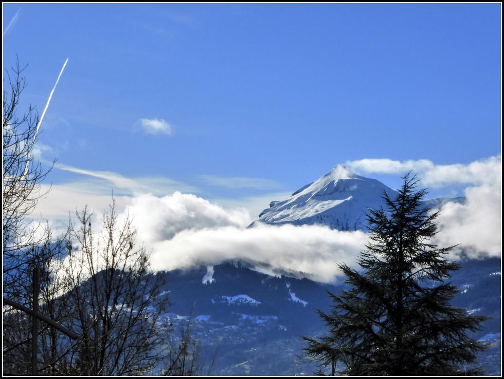UN petit coin de ciel bleu ce matin....