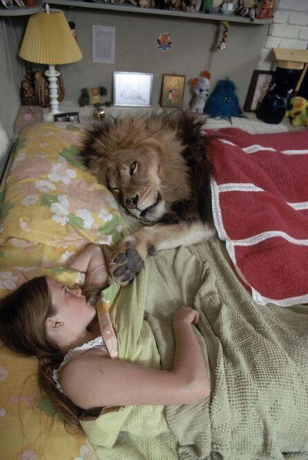 ジンバブエの人気ライオン、セシルが弓矢などで殺されてから2年。今度は別のハンターがセシルの息子、ゼンダを射殺した。