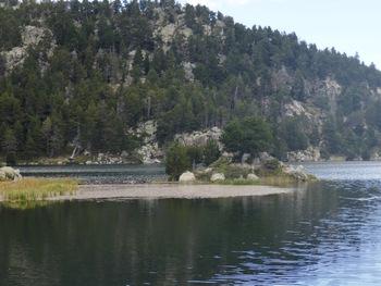 Petite presqu'île sur l'étang de la Pradeille