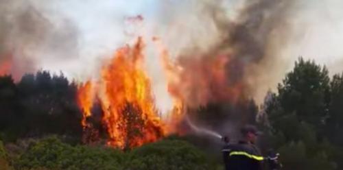 Un incendie de forêt à l'Oukaimden totalement maîtrisé