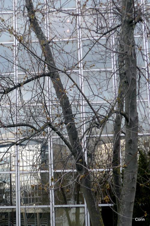 Façade vitrée : des reflets !