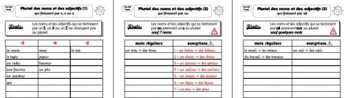 CE1 - Le pluriels des noms et adjectifs
