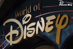 Le cas du New York City World Of Disney