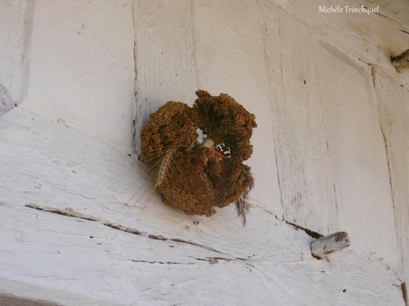Une balade à l'Eco-Musée de Marquèze (40), le 3 septembre...(suite)...