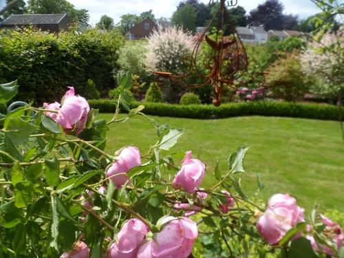 Une visite au jardin...