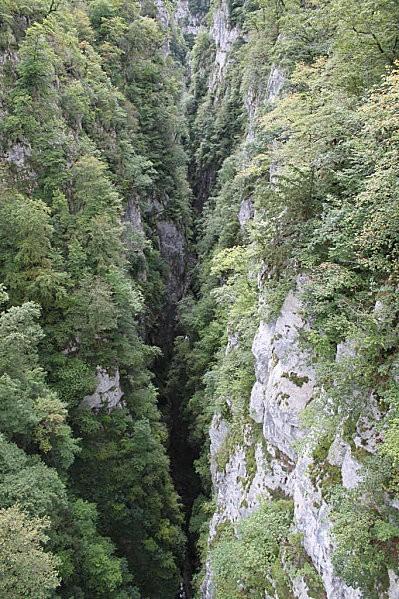 la passerelle d'Holzarte -12-la vue depuis le milieu de la