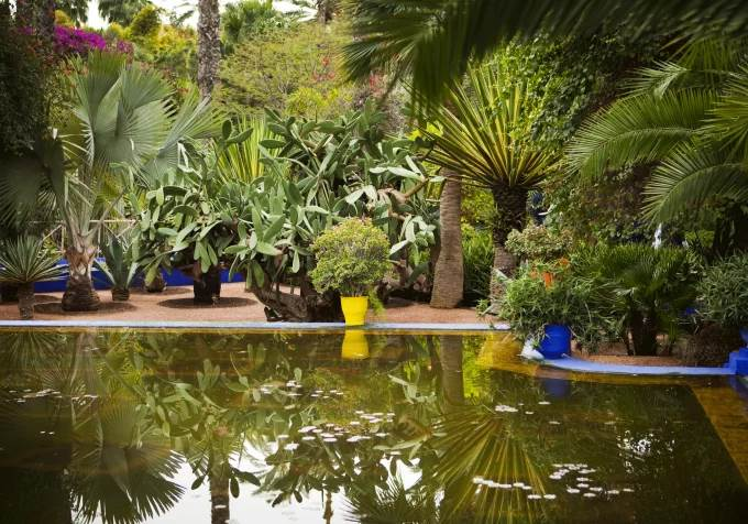 Le jardin Majorelle, de Jacques Majorelle à Yves Saint Laurent Par Katia Fache-Cadoret