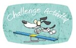 Challenge agility DOGELY