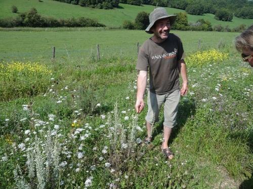 Un botaniste à Villemervry