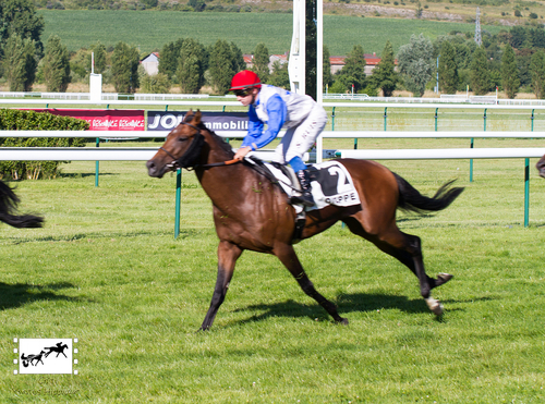 Prix Paul de Laborde-Noguez