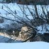 Sous la neige... le paysage