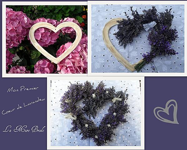2012-07-10 coeur lavande
