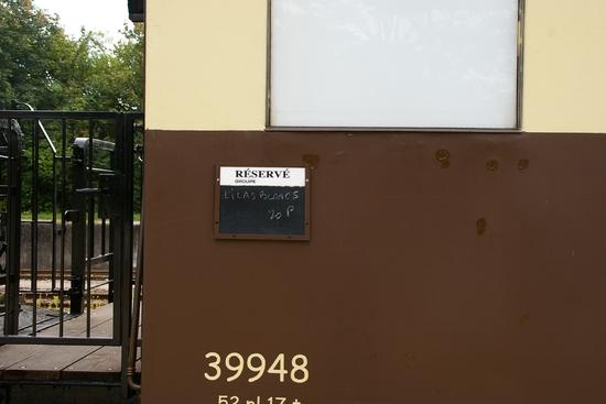 IMGP3954
