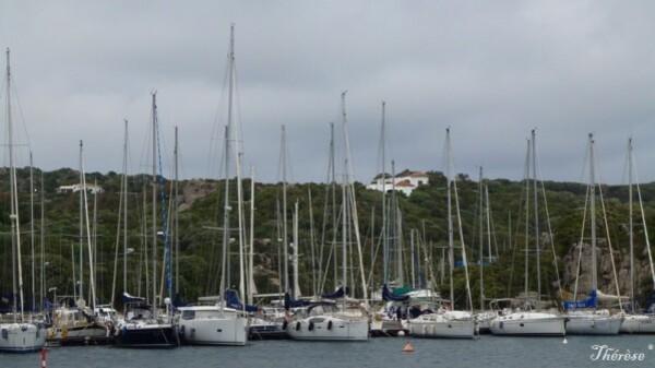 Santa Teresa, le port (22)