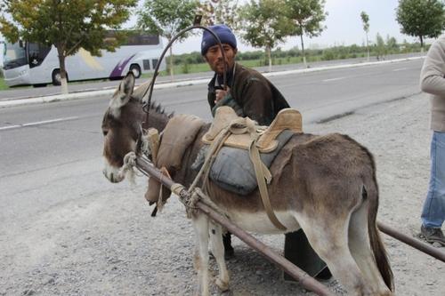 Sur la route, entre Boukhara et Samarcande
