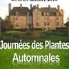 journée-des-plantes-automnales-2010-10-30.jpg