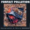 forfait pollution