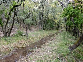 Le canal à l'endroit où nous avons fait demi-tour