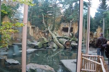 dierenpark amersfoort d50 2011 002