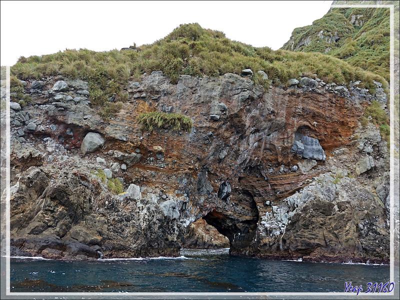 Dernières falaises, dernières grottes ...  - Nightingale Island - Tristan da Cunha