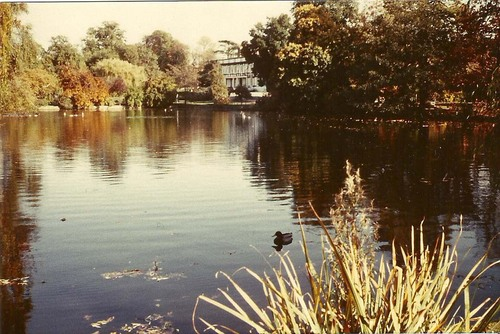 Broomfield Park 3
