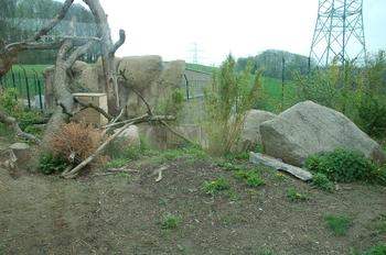 Zoo Osnabruck d50 2012 083