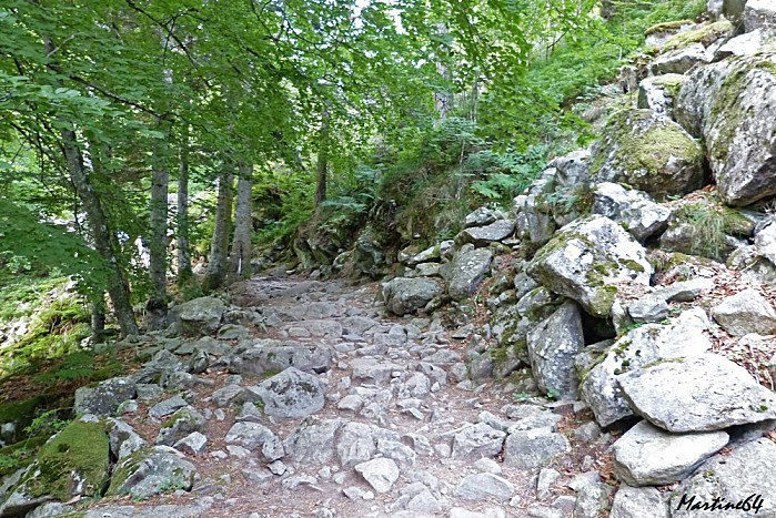 Route des cascades P1000066