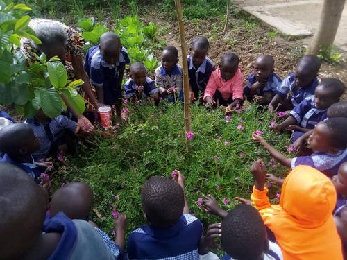 des nouvelles de nos amis du RWANDA  en juin!