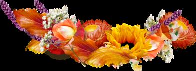 Autumn dividers horizontal