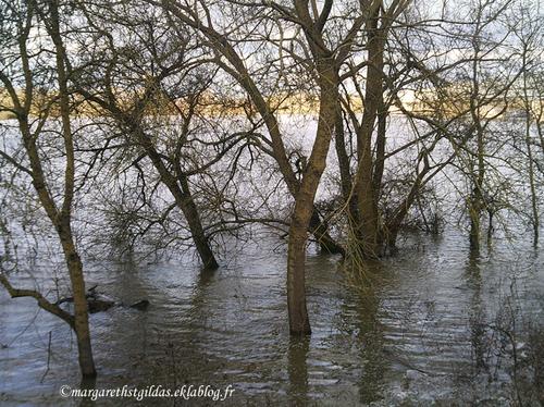 Saumur - Inondation - Inundation