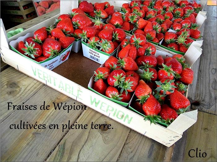 """""""Nos"""" fraises sont de retour !"""