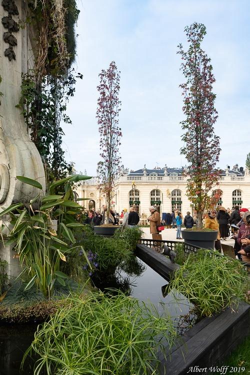 Nancy, un jardin éphémère. (1)
