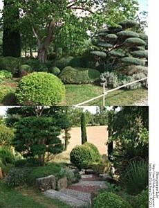 jardin zen 5