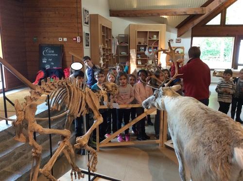 CP - musée de l'ours des cavernes, 17 Octobre