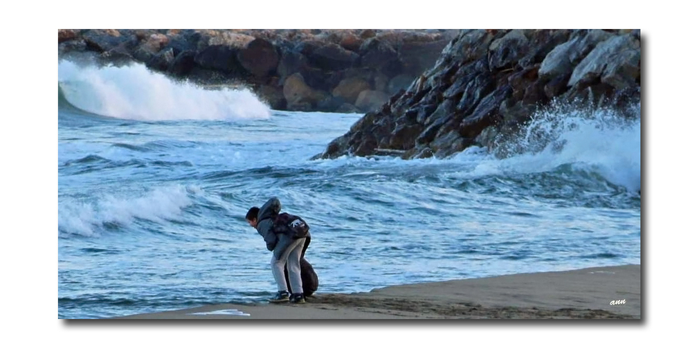A la découvertes des petits ou grands trésors de la plage