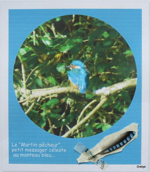 mandala du martin-pêcheur