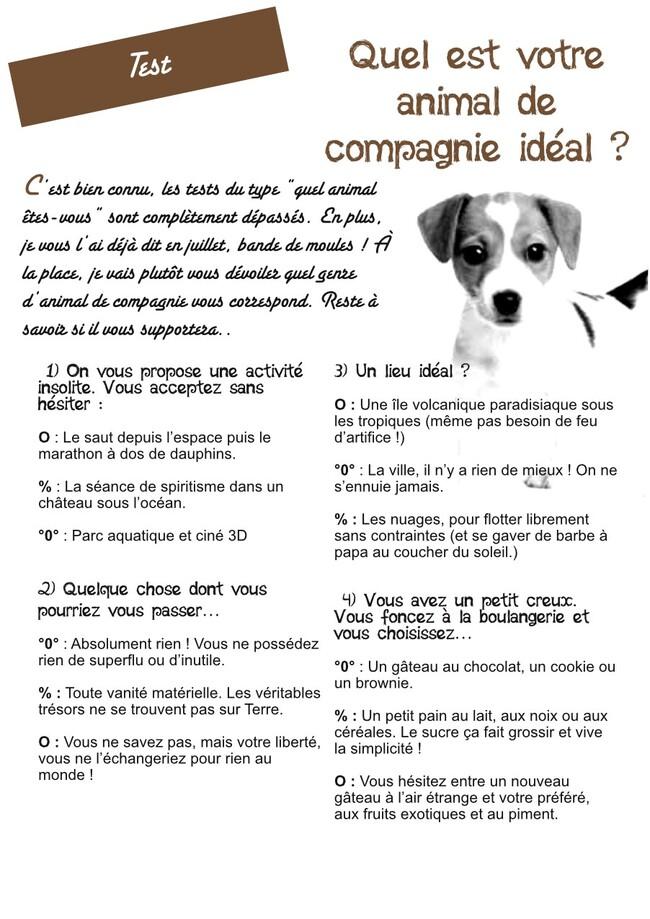 Test : Quel est votre animal de compagnie idéal ? - PsJ 24