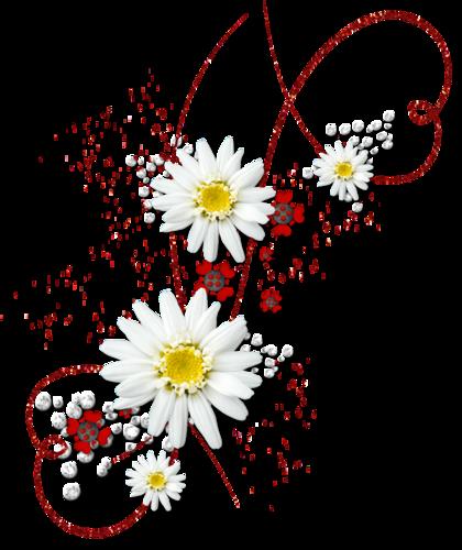 Ornements Floraux Série 31