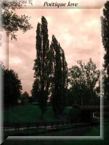 canal-de-l-ourq-2012--41-.JPG-copiry-Angel-DU.jpg