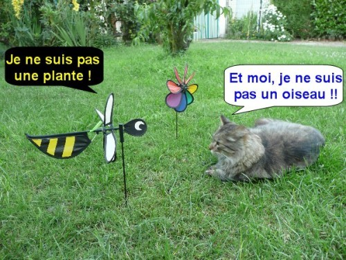 jardin-du-vent-03.JPG