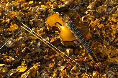 Le vendredi du coucou, haïku,senryû, soir d'automne...