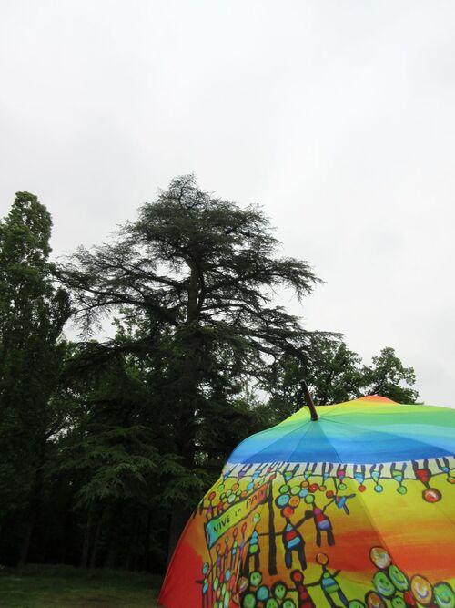 Parapluies Poiré Guallino dans la Loire