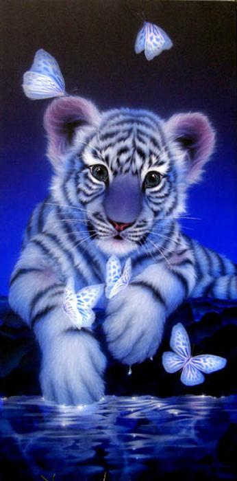 tube tigre